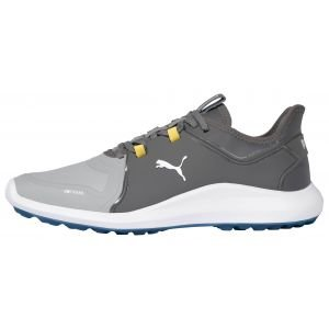 Puma IGNITE Fasten8 Pro Golf Shoes High Rise/Puma Silver/Quiet Shade